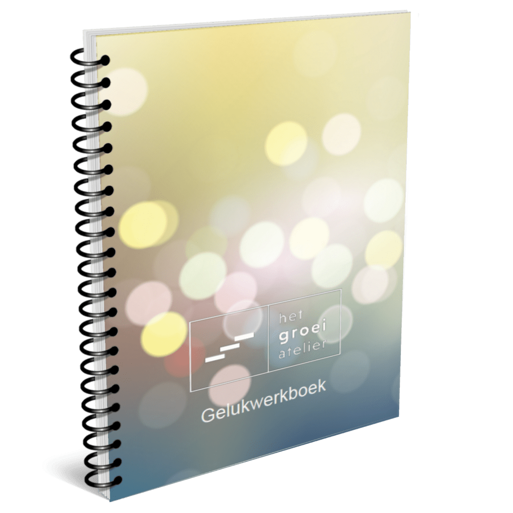 Werkboek coaching life stress burn out