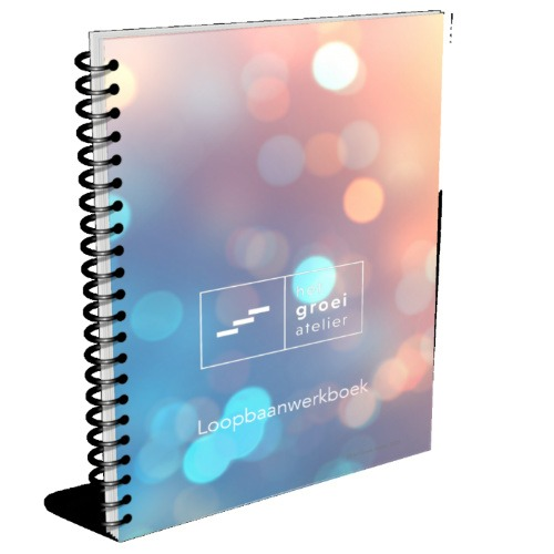 Groei atelier loopbaanwerkboek c